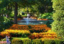Những khu vườn đẹp nhất nước Mỹ vào thu